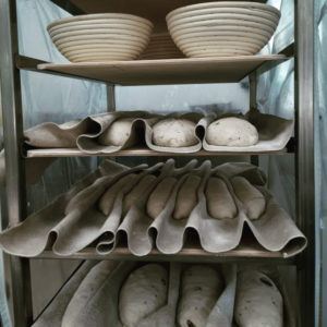 breads proofing